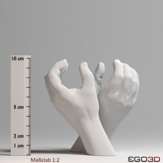 A pair of hands at a scale of 1 : 2
